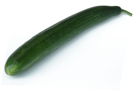Cucumber Euphya