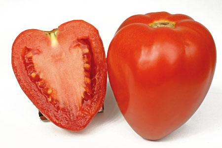 Tomato Fleurette