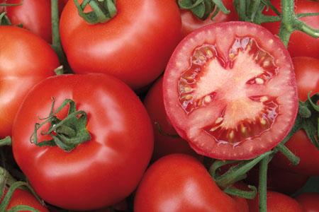 Tomate Serrat