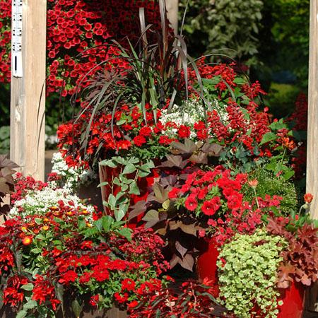 Terrassengestaltung in rot