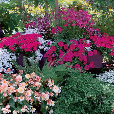 Leuchtende Farben für die Terrasse