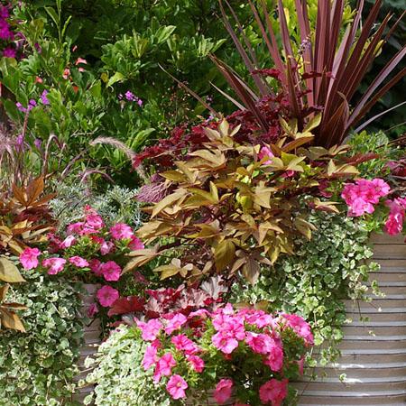 Ein Terrassentraum in Rosa und Bronze