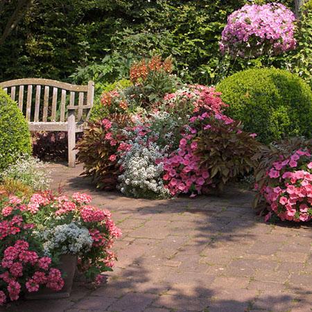 Charmante Gartenträume in rosa