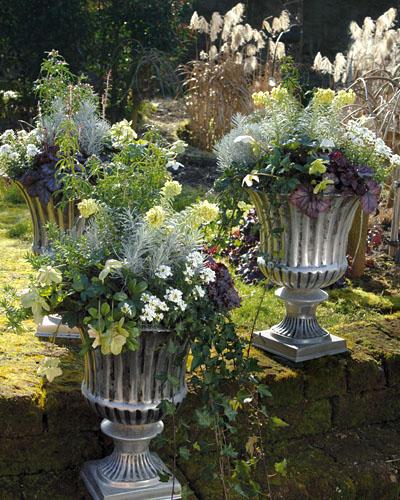 Winterliche gestaltungsideen mit pflanzen for Pflanzen fur die terrasse