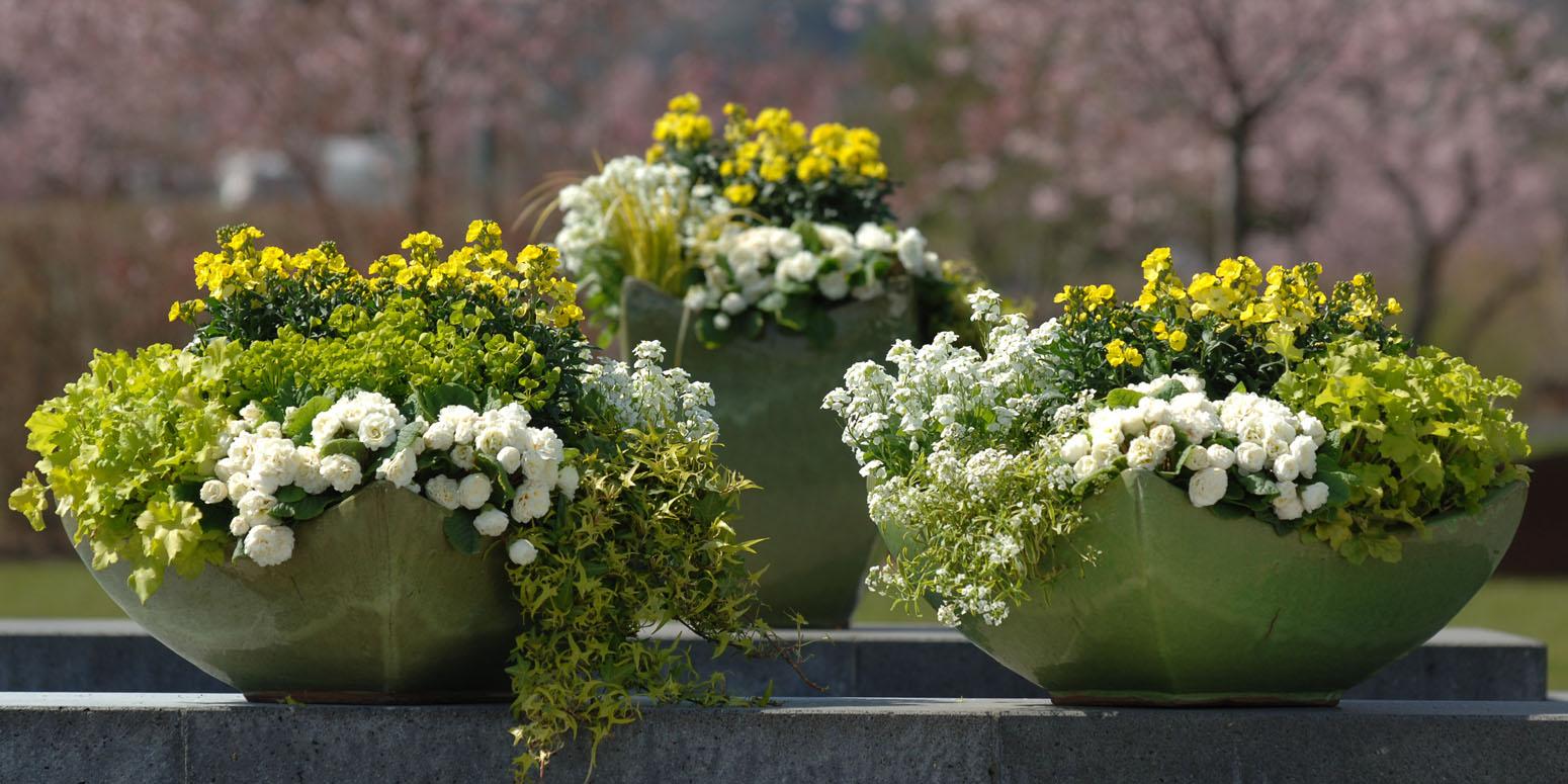 Kientzler Garten im Frühling