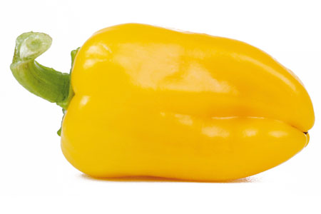 Paprika  Snacky Yellow