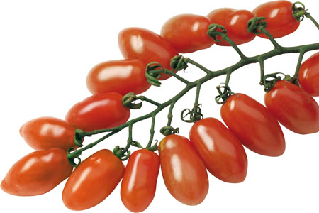 Tomate Trilly