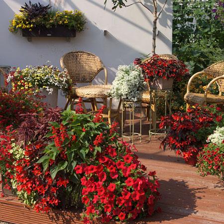 Farbenfrohe Ideen für die Terrasse