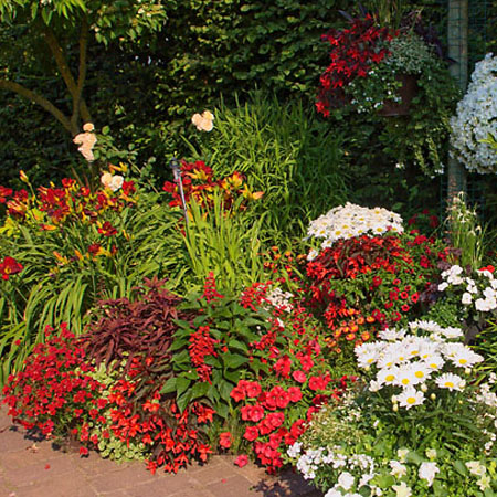 Der Garten - Gestaltung in rot und wieß