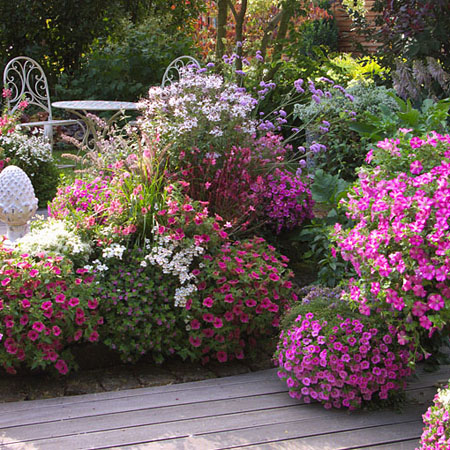 Blumenleuchten in Pink
