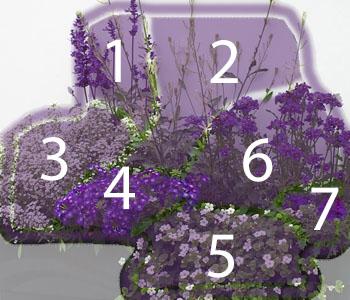 Balkonbepflanzung in blau für den Sommer